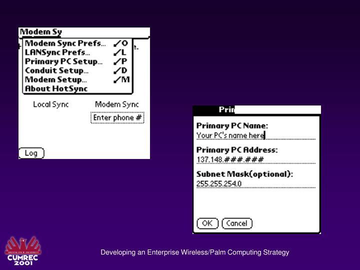 Developing an Enterprise Wireless/Palm Computing Strategy