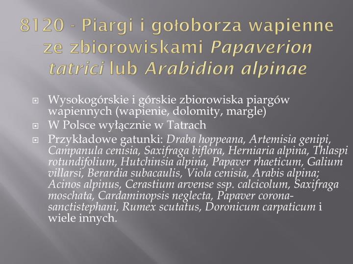 8120 - Piargi i gołoborza wapienne ze zbiorowiskami