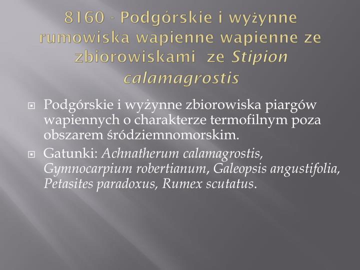 8160 - Podgórskie i wyżynne rumowiska wapienne wapienne ze zbiorowiskami  ze
