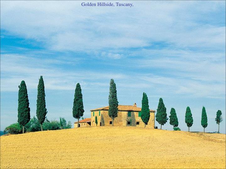 Golden Hillside, Tuscany,