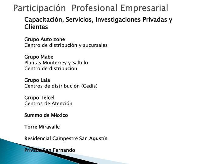 Participación  Profesional Empresarial