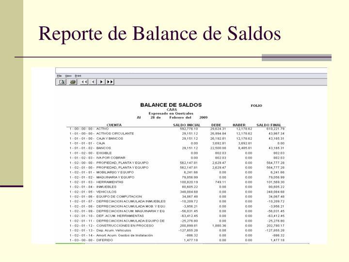 Reporte de Balance de Saldos
