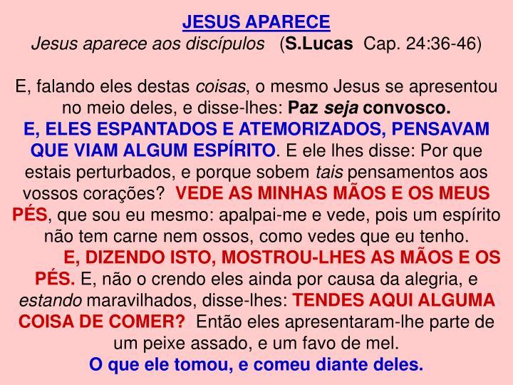 JESUS APARECE