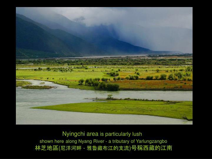 Nyingchi area