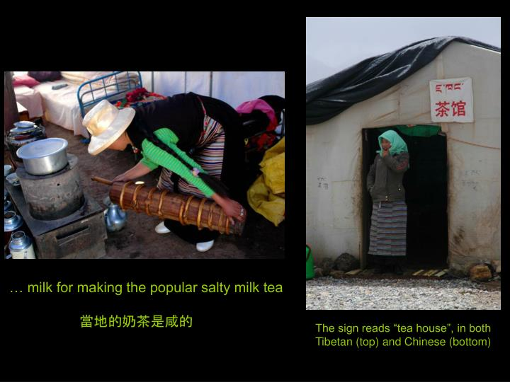 … milk for making the popular salty milk tea