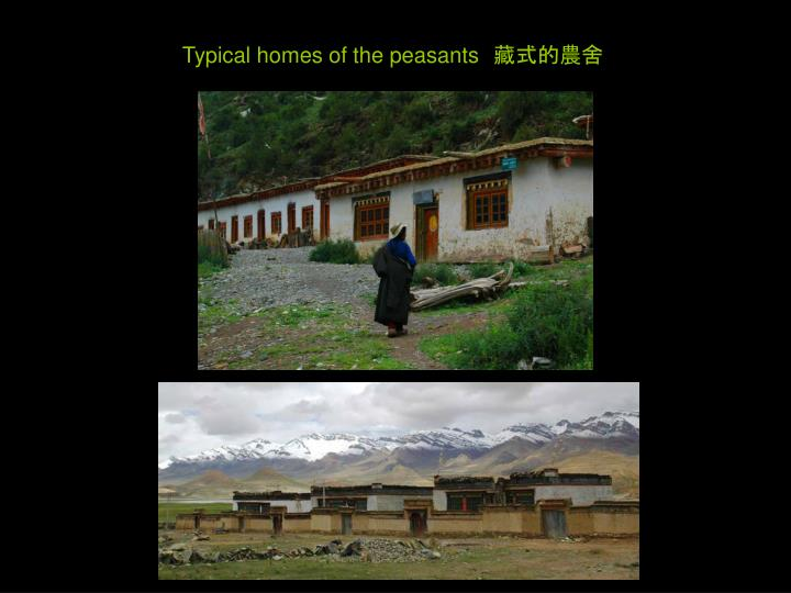Typical homes of the peasants