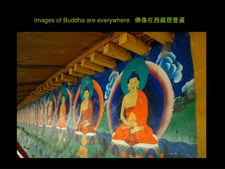 Images of Buddha are everywhere   佛像在西藏很普遍