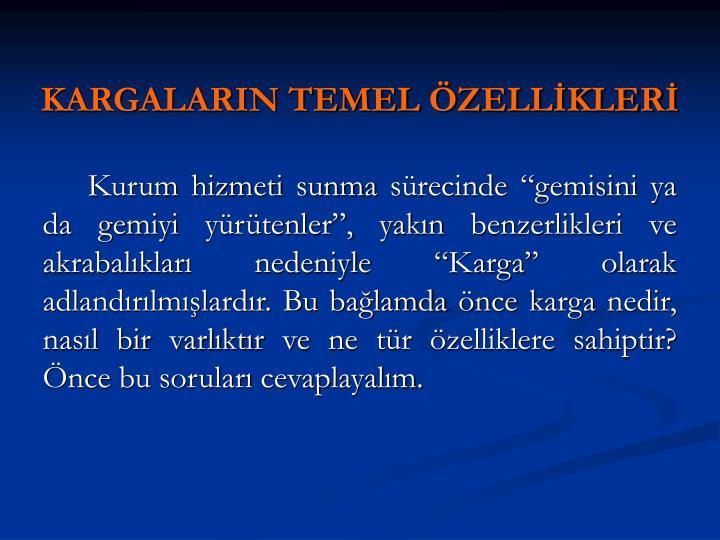 KARGALARIN TEMEL ÖZELLİKLERİ