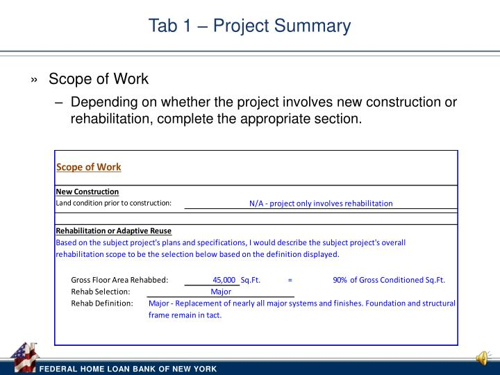 Tab 1 – Project Summary