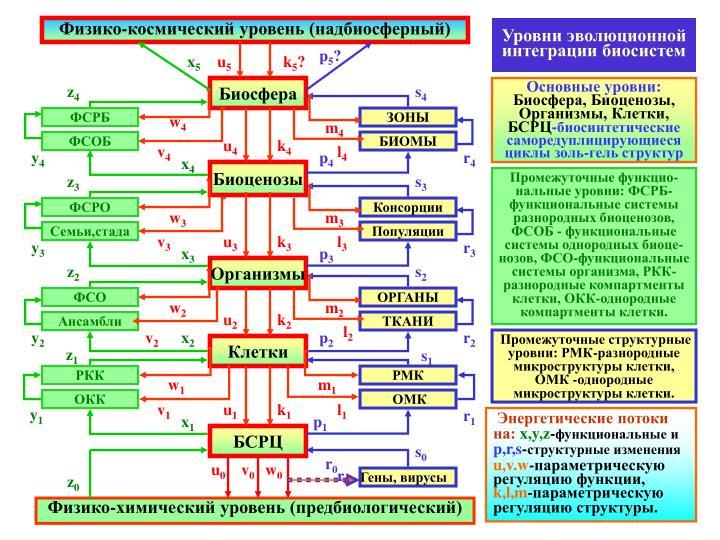 Физико-космический уровень (надбиосферный)