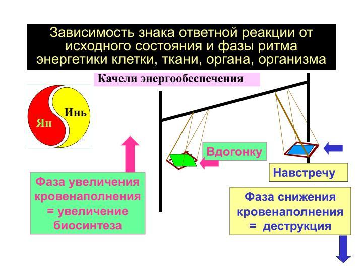 Зависимость знака ответной реакции от исходного состояния и фазы ритма энергетики клетки, ткани, органа, организма
