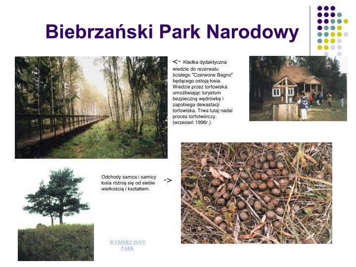 Biebrzaski Park Narodowy