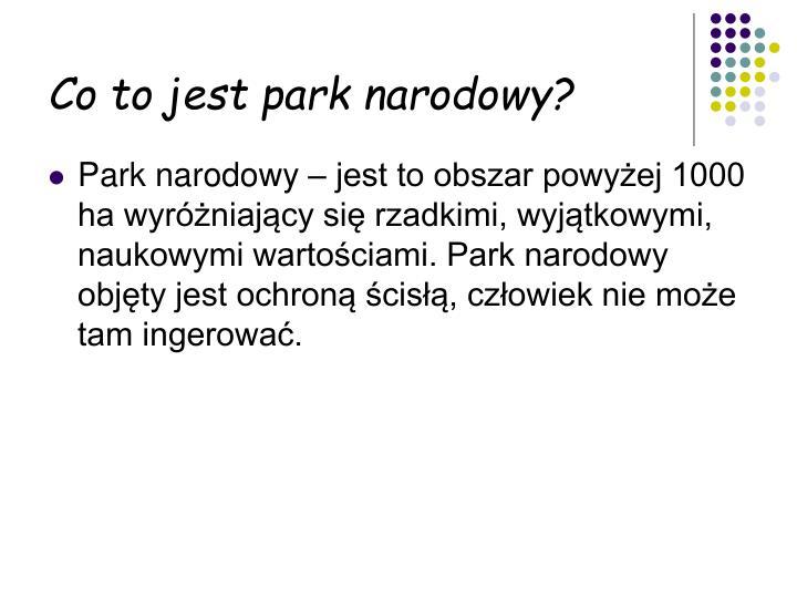 Co to jest park narodowy?