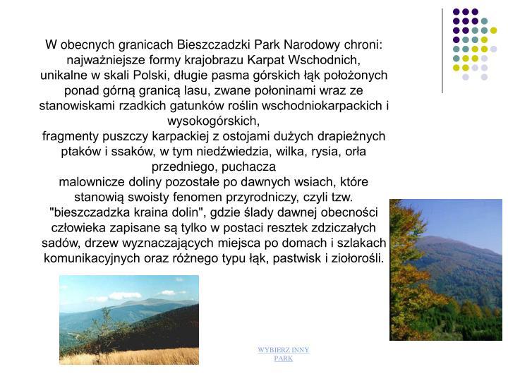 W obecnych granicach Bieszczadzki Park Narodowy chroni: