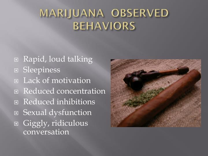 MARIJUANA  OBSERVED BEHAVIORS