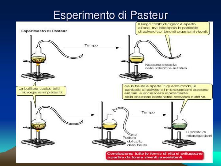 Esperimento di Pasteur