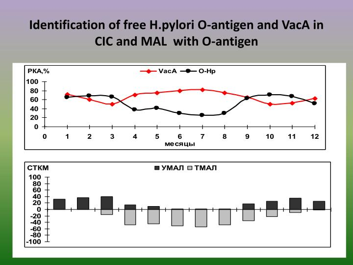 Identification of free H.pylori O-antigen and VacA in CIC and MAL  with O-antigen