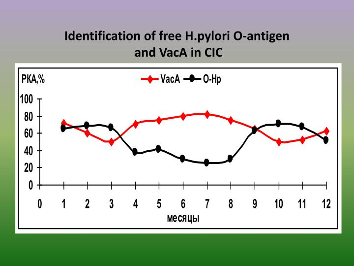Identification of free H.pylori O-antigen
