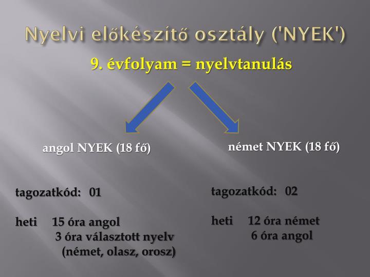 Nyelvi előkészítő osztály ('NYEK')