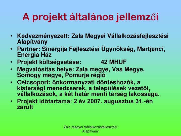 A projekt ltalnos jellemzi