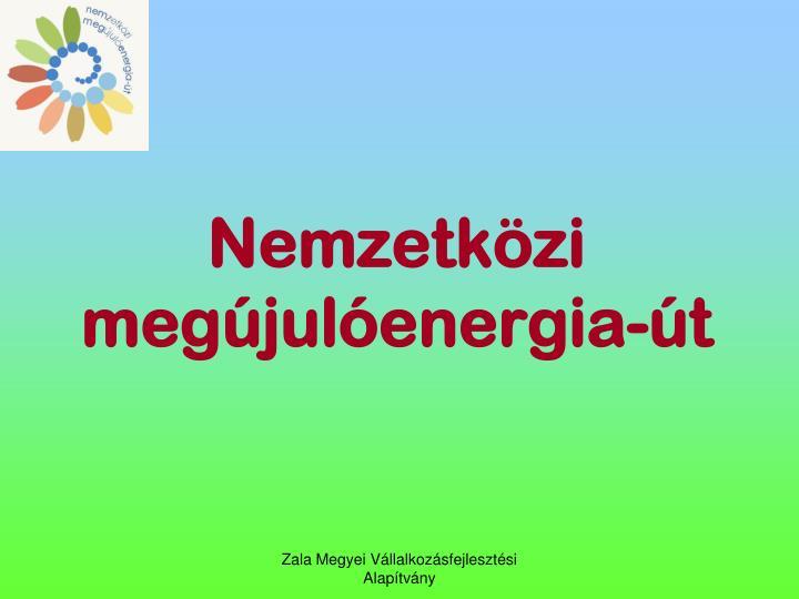 Nemzetkzi megjulenergia-t