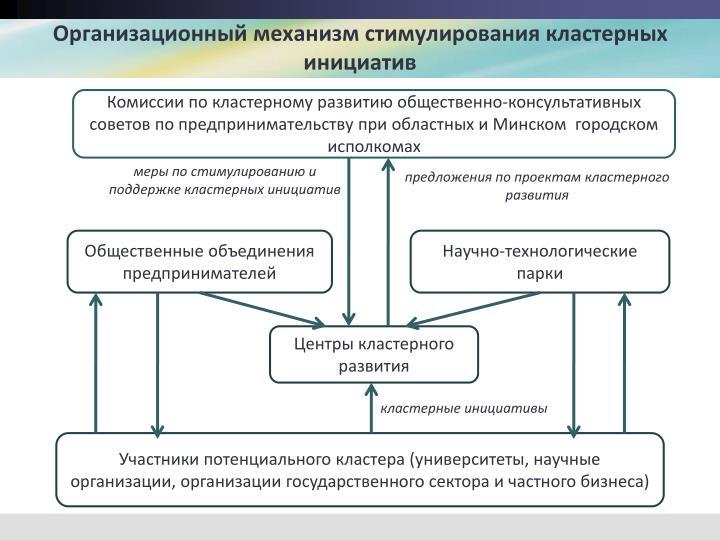 Организационный механизм стимулирования кластерных инициатив