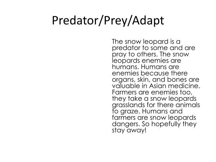 Predator/Prey/Adapt