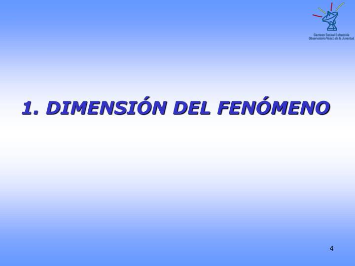 1. DIMENSIÓN DEL FENÓMENO