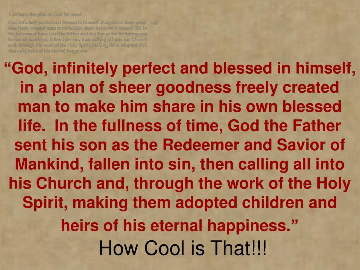 """God, infinitely perfect and blessed in himself, in a plan of sheer goodness freely created man to..."