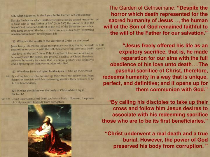 The Garden of Gethsemane:
