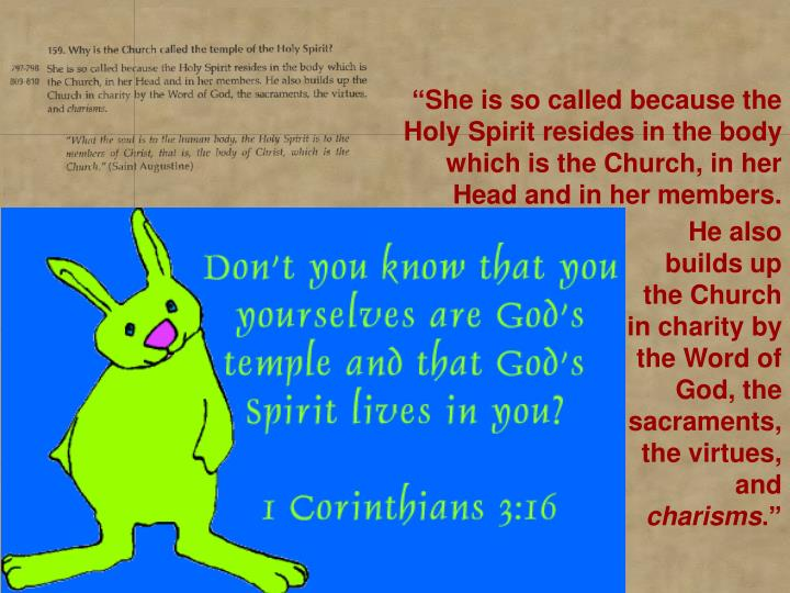 """She is so called because the Holy Spirit resides in the body which is the Church, in her Head and in her members."