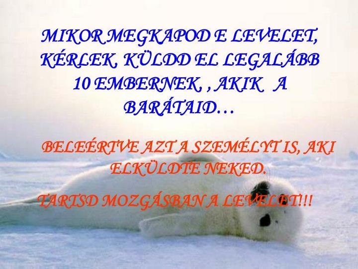 MIKOR MEGKAPOD E LEVELET