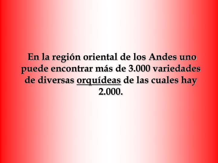 En la región oriental de los Andes uno puede encontrar más de 3.000 variedades de diversas