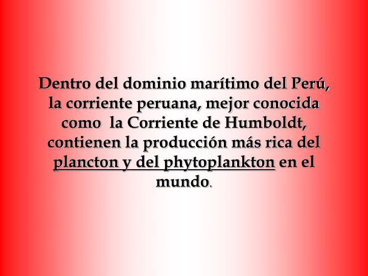 Dentro del dominio marítimo del Perú,
