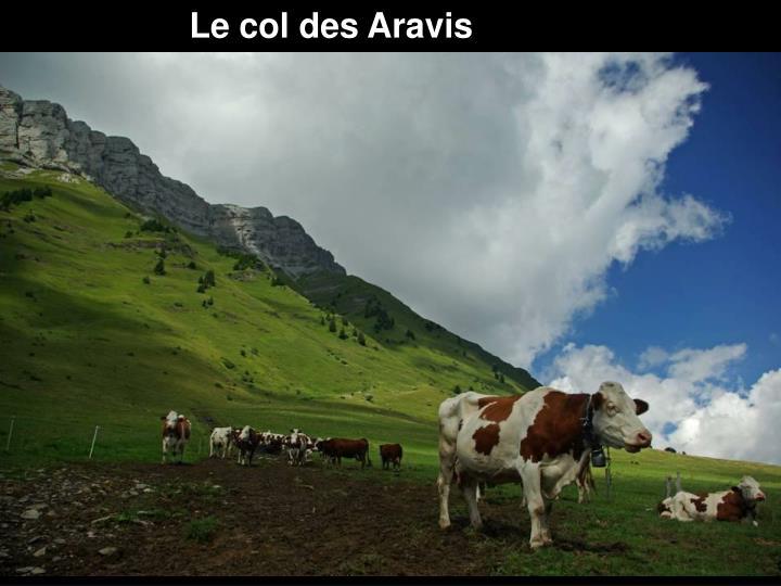 Le col des Aravis