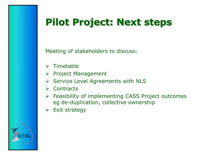 Pilot Project: Next steps