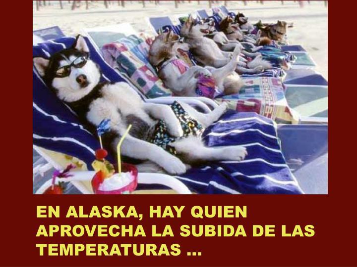 EN ALASKA, HAY QUIEN