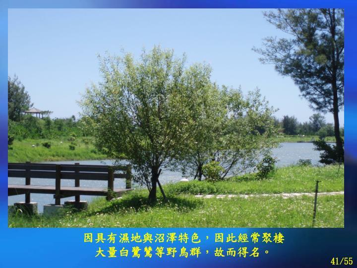 因具有濕地與沼澤特色,因此經常聚棲