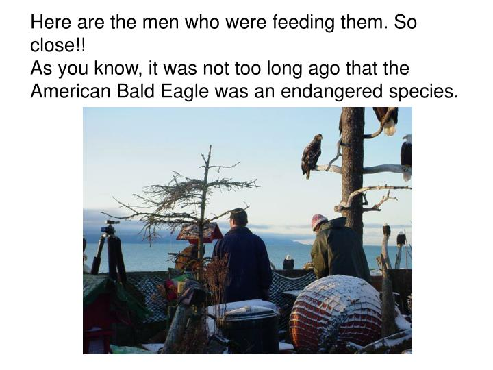 Here are the men who were feeding them. So close!!