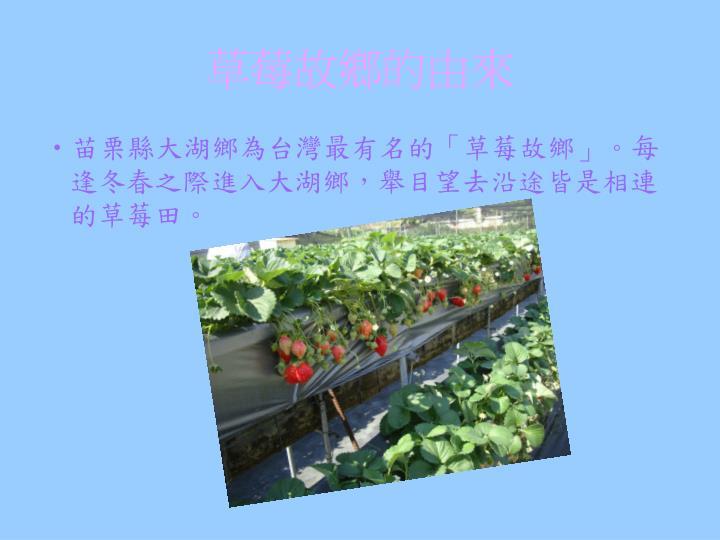 草莓故鄉的由來