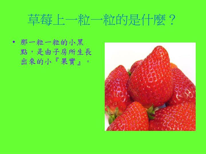 草莓上一粒一粒的是什麼?