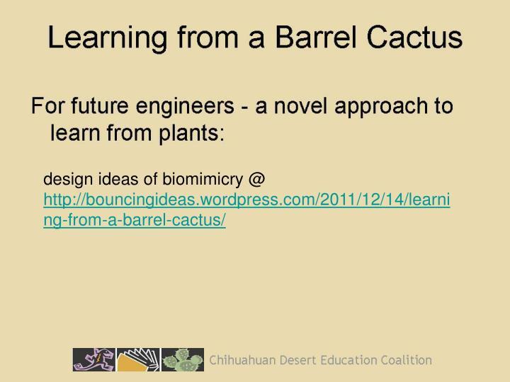design ideas of biomimicry @