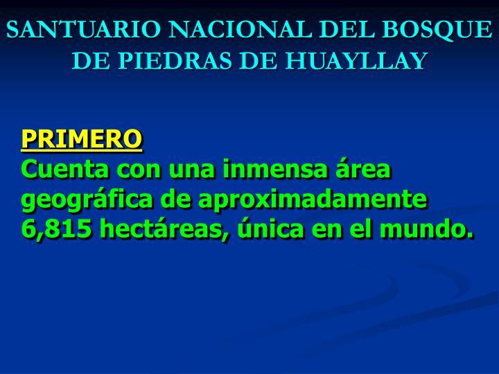 SANTUARIO NACIONAL DEL BOSQUE DE PIEDRAS DE HUAYLLAY