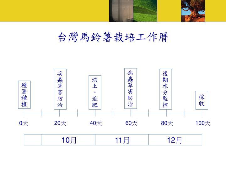 台灣馬鈴薯栽培工作曆