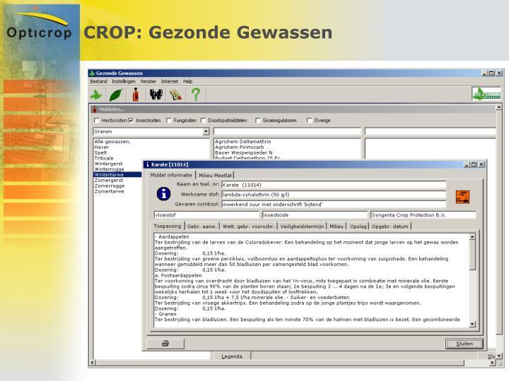 CROP: Gezonde Gewassen