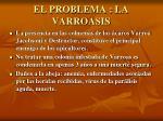 el problema la varroasis