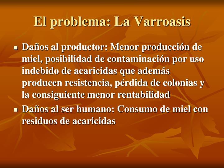 El problema: La Varroasis