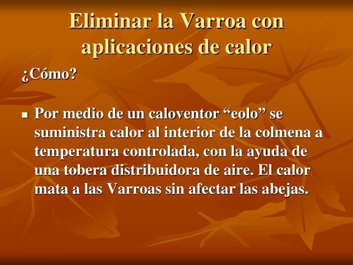 Eliminar la Varroa con aplicaciones de calor