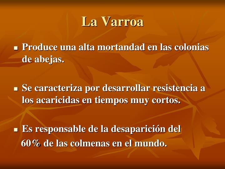 La Varroa