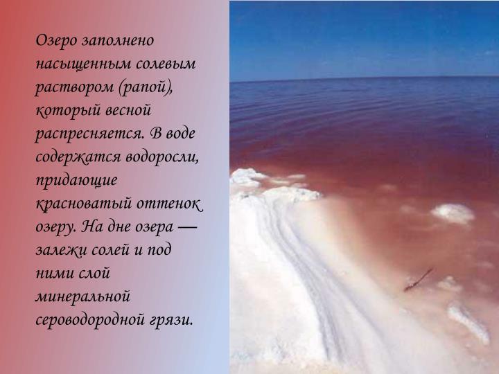 Озеро заполнено насыщенным солевым раствором (рапой), который весной распресняется. В воде содержатся водоросли, придающие красноватый оттенок озеру. На дне озера — залежи солей и под ними слой минеральной сероводородной грязи.